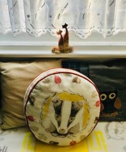 Cushions and window