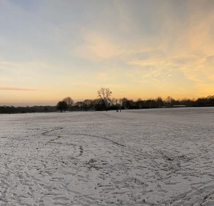 Snowy field in Roundhay, Leeds